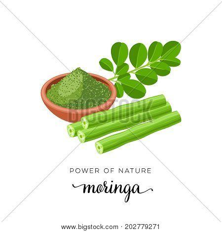Superfood fruit. Moringa twig with leaves powder. Vector illustration cartoon flat icon isolated on white.