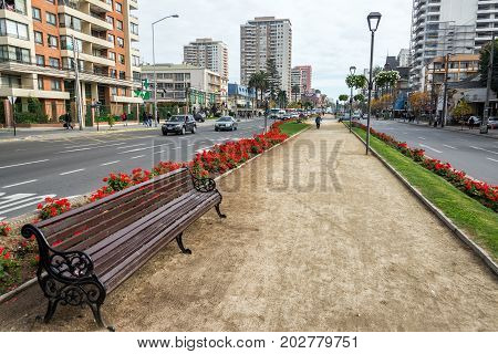 VINA DEL MAR CHILE - MAY 30: Pedestrian path in the center of Vina del Mar Chile on May 30 2014