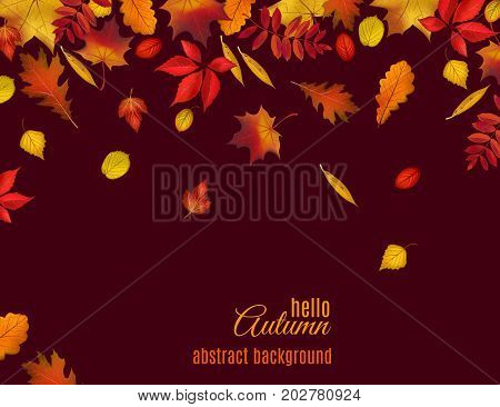 Autumn leaves isolated on dark brown background. Abstract hello Autumn background for your greeting cards design or website. Vector illustration