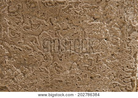 Antique Eroded Concrete Wall Texture
