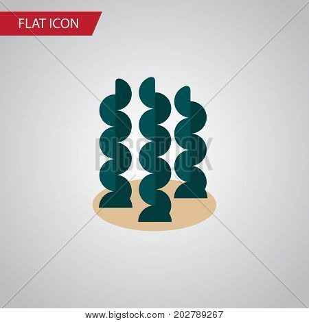 Alga Vector Element Can Be Used For Seaweed, Alga, Spirulina Design Concept.  Isolated Seaweed Flat Icon.