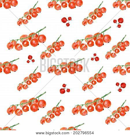 Red currant on white background. Watercolor hand made. Seamless colorful pattern. Could be used for textile or in design