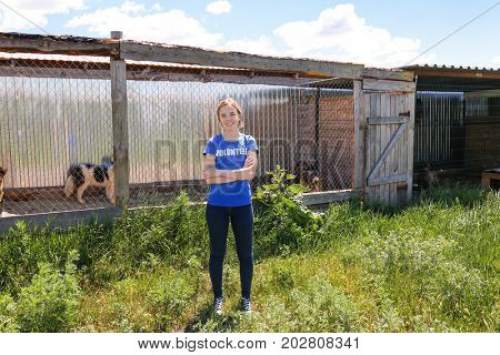 Female volunteer standing near shelter cage with homeless dogs