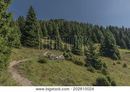 Sunny day under Velky Choc hill in Slovakia