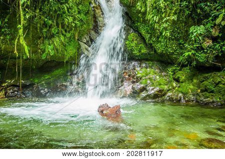 Beautiful small waterfall in green forest with stones in river at Mindo, Pichincha.