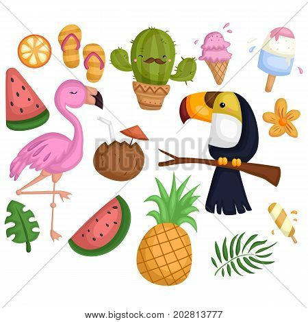 a tropical vector set with many items