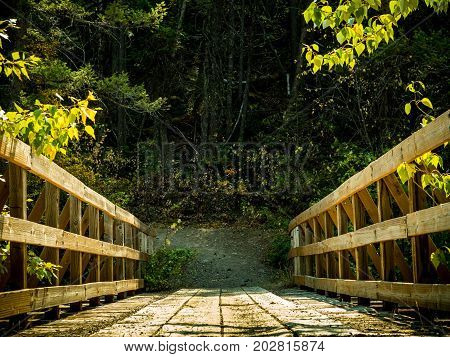 A human/horse foot bridge that crosses over a mountain stream that leads to a mountain trail.