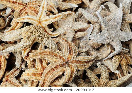 Chinese delicacy: starfish at Hong Kong seafood market