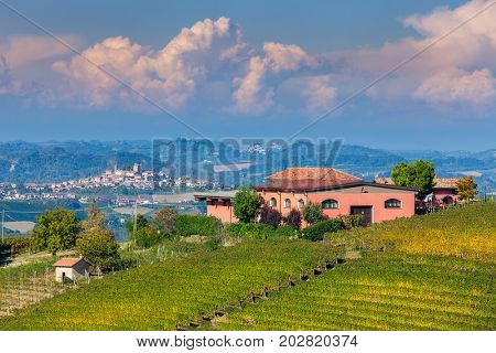 Rural house on the hill and autumnal vineyards in Piedmont, Northern Italy.