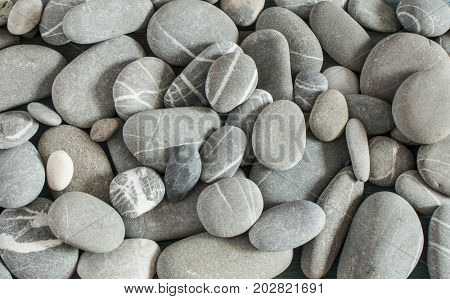 abstract background with round pebble stones