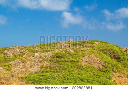 Green stony hill nature background, Menorca island, Spain.
