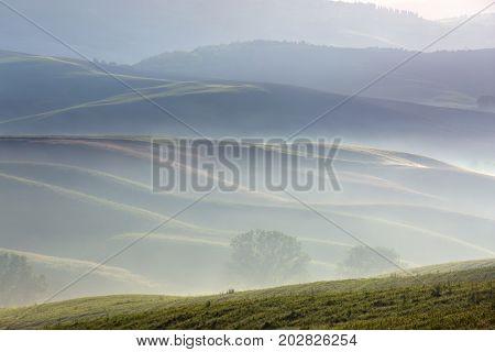Tuscany foggy morning, farmland hill country landscape. Italy, Europe.