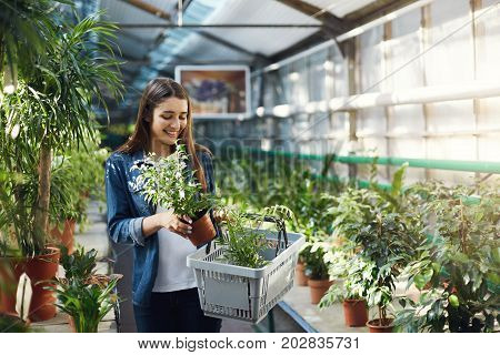 Happy girl shopping for plants in a greenery store. Planning to redesign her backyard.