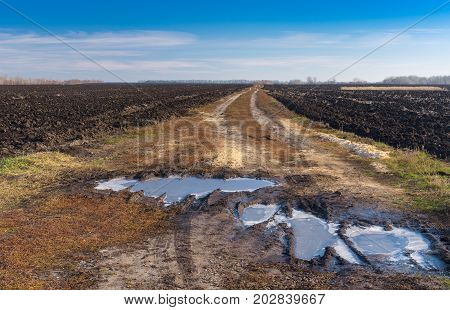 Autumnal landscape with agricultural fields and dirty road in central Ukraine