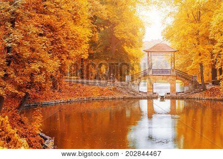 Wooden bridge in the autumn park, Japan autumn season, Kyoto. Japan