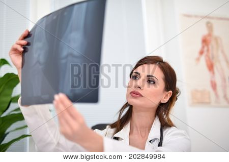 Female doctor examining a radiography