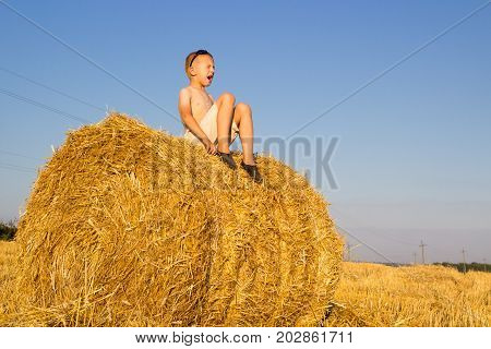 The boy sat on the hay and shouted