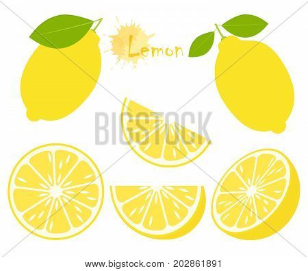 Lemon with green leaves slice citrus isolated on white background. Tropical fruits. Raw and vegetarian food. Vector illustration.
