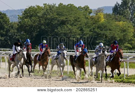 PYATIGORSK,RUSSIA - SEPTEMBER 03,2017: Horse race for the prize of the Sravnenia - the oldest and largest racecourses in Russia.