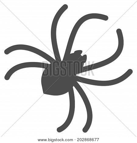 Parasite Spider vector pictogram. Style is flat graphic gray symbol.