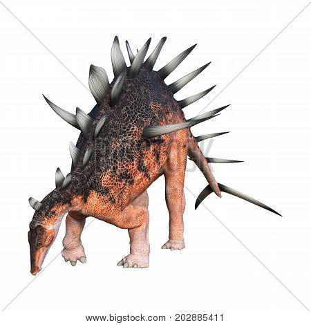 3D Rendering Dinosaur Kentrosaurus On White