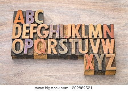 English alphabet abstract in vintage letterpress wood type printing blocks against grained wood