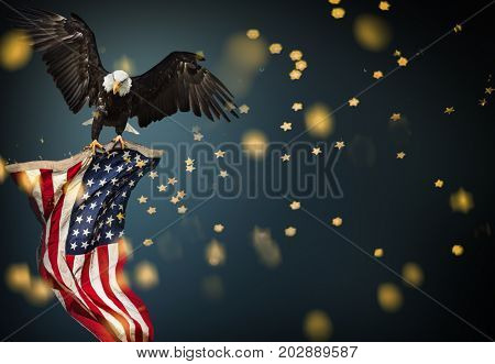 North American Bald Eagle flying with American flag. Patriotic concept.