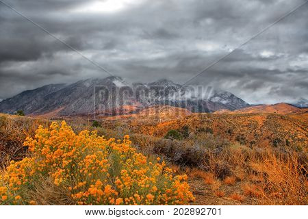 Sierra Nevada mountains in cloud cover
