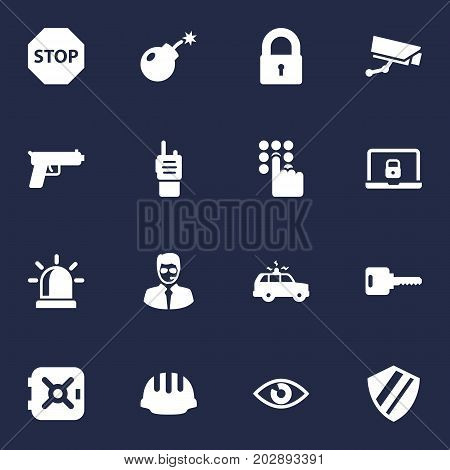 Collection Of Shot, Open, Surveillance And Other Elements.  Set Of 16 Procuring Icons Set.