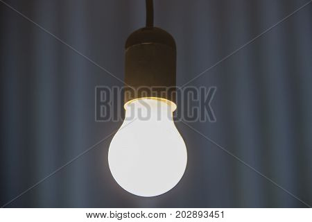 Burning light bulb hangs from  the ceiling