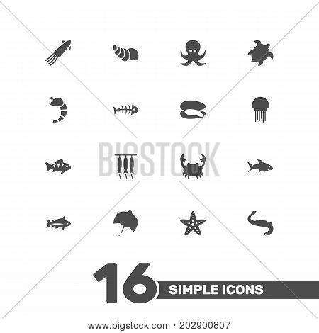 Collection Of Crustaceans, Fish, Stingray And Other Elements.  Set Of 16 Seafood Icons Set.