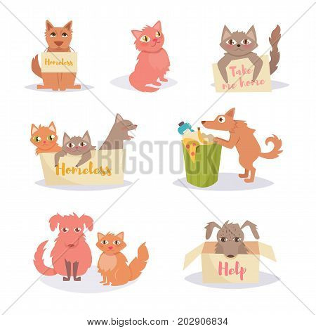Stray cats and dogs. Homeless. Set, group. Vector. Cartoon. Isolated art on white background Flat