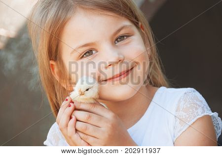 Happy Little Girl  Holds A Chicken In His Hands. Child With Poultry.  Close View Of Baby Chick In Gi