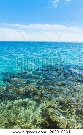 Sea Panorama Divine