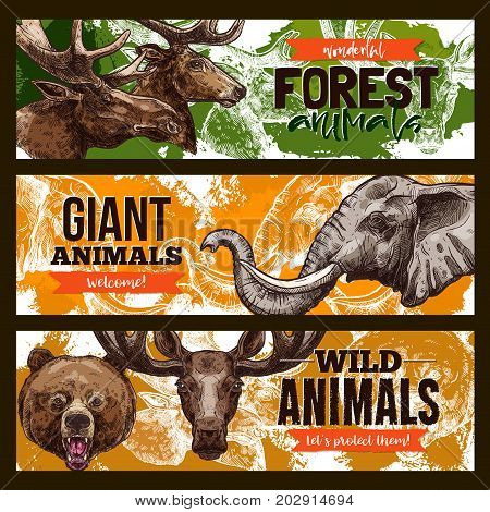 Wild animals banners. Vector set of giant forest and African animals of grizzly bear, elk or deer and elephant for save and wildlife protection or welcome zoo design template