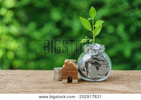 jar with full of coins with growth sprout plant and wooden miniature house as property or mortgage investment concept.