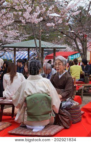 Kyoto, Japan - May 2017: People enjoying cherry blossom hanami in Maruyama Park in Kyoto, Japan