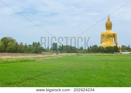Golden Buddha In Countryside. Large Buddha Statue At Wat Muang In Angthong In Back Side Rural Landsc