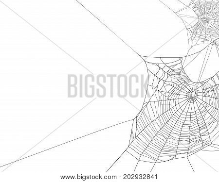 Black spider web silhouette on white vector background