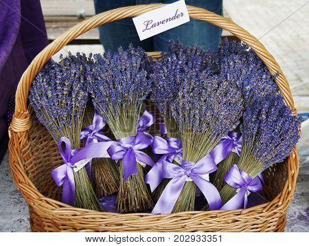 Dried lavender flower bouquets with purple ribbon in a wicker basket at the market
