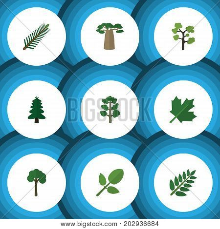 Flat Icon Ecology Set Of Garden, Park, Spruce Leaves And Other Vector Objects
