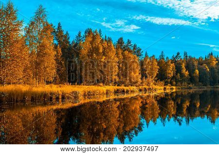 autunm landscape reflecting in the water perfect fall scenery