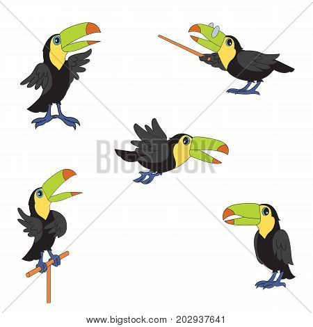 Set of character illustrations. Cute birds toucan. Cartoon personages isolated on white background.