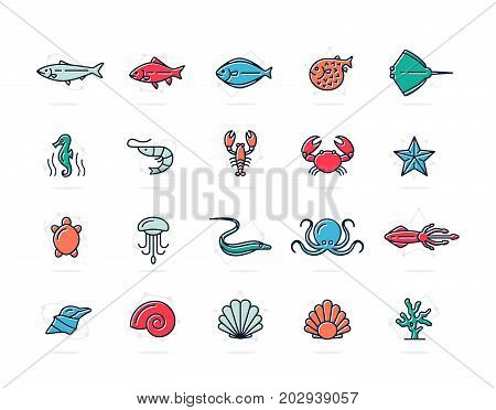 Set of vector fish and sea food colored line icons. Shrimp, oyster, squid, crab, ell, fugu, lobster, carp, sturgeon, jellyfish, octopus, turtle, starfish, coral, sell, seahorse and more. Editable Stroke.