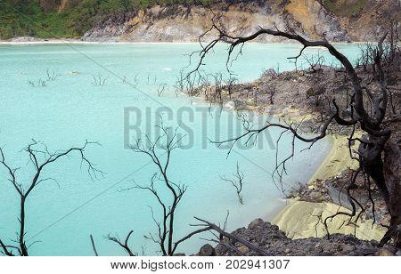 Kawah Putih - Ancient Volcanic Crater With Acid Sulfur Water, Indonesia