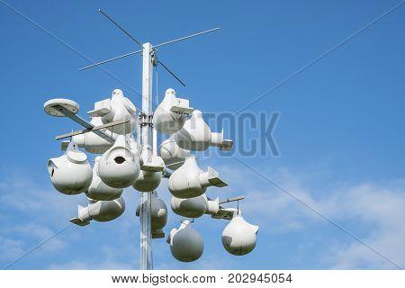 Bunch of Purple Martin Bird Houses on a Pole