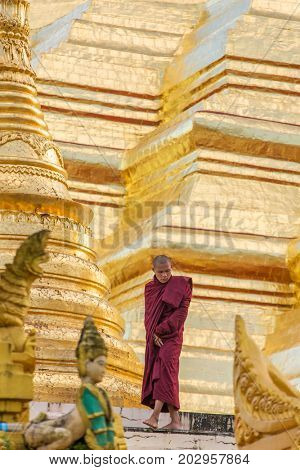 Yangon, Myanmar - September 27, 2016: Buddhist monk walk around Shwedagon Pagoda in Yangon, Myanmar.