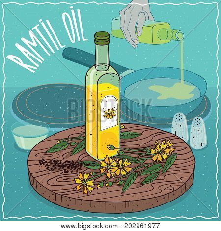 Glass bottle of Ramtil oil and Guizotia abyssinica plant. Hand pouring oil on frying pan. Natural vegetable oil used for frying food