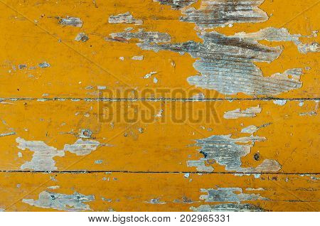 Texture of old dilapidated wooden floor with yellow peeling paint. Exfoliated Paint on an Old Wooden Floor. Shabby Background