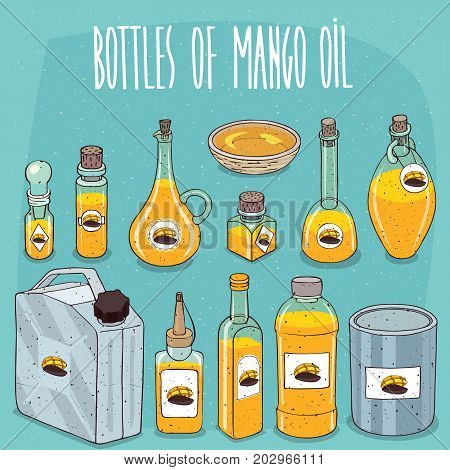 Set of different transparent containers of different materials with oil from seeds of Mangifera indica known as Mango oil. On all bottles stickers with image of plant